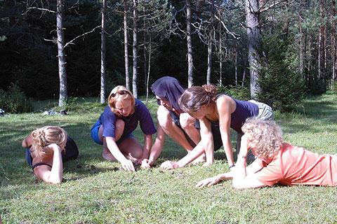 Wildnispädagogik Ausbildung Kräuter suchen